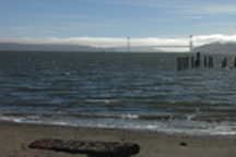 View of the Golden Gate Bridge from Reynolds Beach, Angel Island