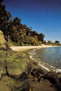 Quarry Beach ~ a little slice of Haven on Angel Island State Park